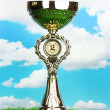 Trophy cup on grass and sky background — Stock Photo #12646844