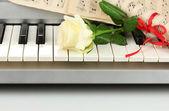 Plano de fundo do teclado de piano — Fotografia Stock