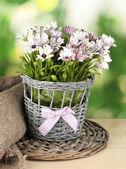 Bouquet de flores lindo de verão em um vaso de vime, sobre fundo verde — Foto Stock