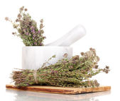 Thyme herb and mortar isolated on white — Stock Photo