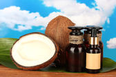 Coconut oil in bottles with coconuts on sky background — Stock Photo