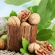 Walnuts with green leaves in garden, on green background - Stock Photo