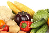 Many fresh vegetables close-up — Stock Photo