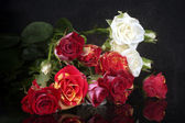 Bouquet of beautiful roses on black background close-up — Stock Photo
