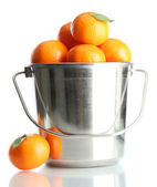 Ripe tangerines in metal bucket isolated on white — Stock Photo