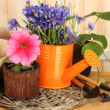 Watering can, tools and flowers on wooden background — Stok fotoğraf