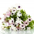 Bouquet of beautiful summer flowers, isolated on white — Stock Photo