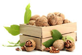 Walnuts with green leaves in woooden crate, isolated on white — Stock Photo