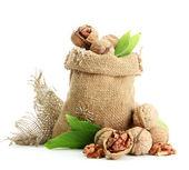 Valnötter med gröna blad i säckväv säck, isolerad på vit — Stockfoto