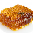 Sweet honeycomb with honey and bee, isolated on white — Stock Photo #12750037