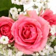 Pink roses in bouquet isolated on white — Stock Photo