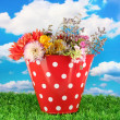 Red bucket with white polka-dot with flowers on sky background — Stock Photo #12778833