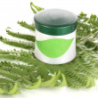 Jar of cream with branch of fern isolated on white — Stock Photo #12797104