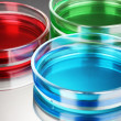 Royalty-Free Stock Photo: Color liquid in petri dishes on grey background