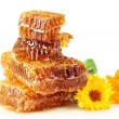 Sweet honeycomb with honey, bee and flowers, isolated on white - Stockfoto
