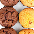 Fresh muffins close-up — Stock Photo