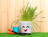 A pot of grass on wooden background — Stock Photo