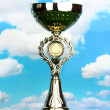 Trophy cup on grass and sky background — Stock Photo #12863105