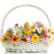 Beautiful bouquet of bright wildflowers in basket, isolated on white — Stock Photo #12864619