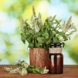 Essential oil and mint on green background close-up — Stok fotoğraf