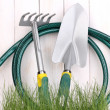 Green grass and garden tools on wooden background — Stock Photo