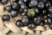 Fresh blueberries on wicker mat close-up — Stock Photo