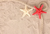 Starfishes with rope on sand — Stock Photo