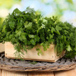 Wooden box with parsley and dill on wicker cradle on wooden table on natura - 图库照片