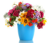 Beautiful bouquet of bright wildflowers in flowerpot, isolated on white — Stock Photo