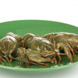 Green crayfishes on the plate isolated on white — Stockfoto