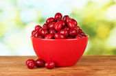 Fresh cornel berries in red bowl on green background close-up — Stock Photo