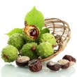 Chestnuts with leaves in basket, isolated on white — Stock Photo
