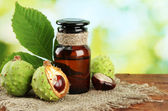 Medicine bottle with chestnuts and leaves, on green background — Stock Photo