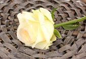 Beautiful rose on wicker mat close-up — Stock Photo