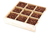 Coffee beans in wooden box isolated on white — Stock Photo