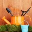 Green moss and watering can with gardening tools on wooden background - ストック写真