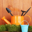Green moss and watering can with gardening tools on wooden background — Stock Photo #13205776
