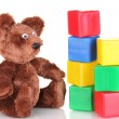 Sitting bear toy and color cubes isolated on white — Stock Photo