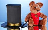 Urso e cilindro preto sobre fundo azul — Fotografia Stock