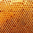 Yellow beautiful honeycomb with honey, background - Foto Stock