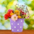 Purple bucket with white polka-dot with flowers on green background — Stock Photo #13211211