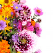 Beautiful bouquet of bright flowers isolated on white — Stock Photo