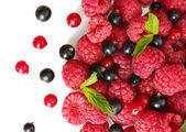 Ripe berries with mint, isolated on white — Stock Photo
