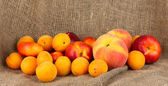 Ripe fruit on canvas background close-up — Stock Photo