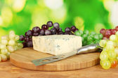 Cheese with mold on the cutting board with grapes on bright green backgroun — Stock Photo