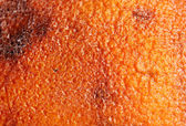 Rotten orange texture, close up — Stock Photo