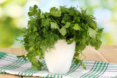 Pote branco com salsa e endro sobre mesa de madeira de fundo natural — Foto Stock