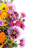 Beautiful bouquet of bright flowers isolated on white — ストック写真