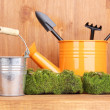 Green moss and watering can with gardening tools on wooden background — Stock Photo