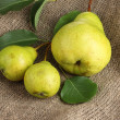 Stock Photo: Juicy flavorful pears on sackcloth